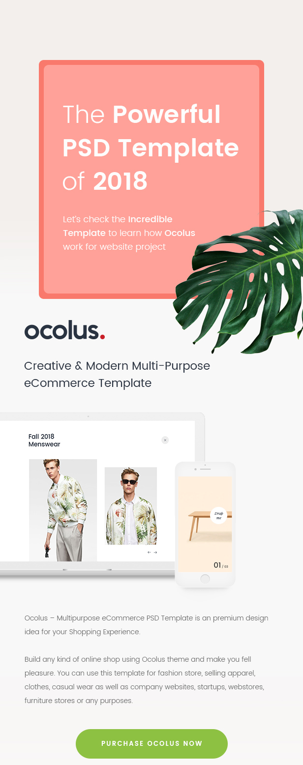 Ocolus - Creative & Modern Multi-Purpose eCommerce PSD Template - 5